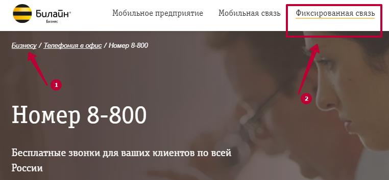 тарифы 8800 билайн